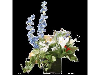 Vase CP15-29B