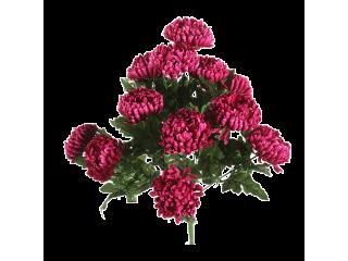 Piquet de chrysanthèmes mauve
