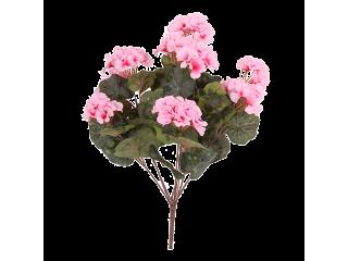Piquet de géraniums rose
