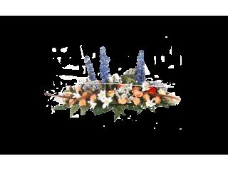 Raquette 21C