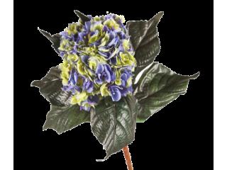 Piquet hortensias bleu