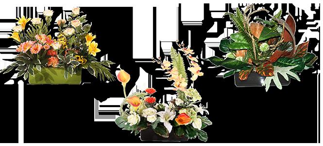 Image réprésentative de la catégorie Jardinière garnie