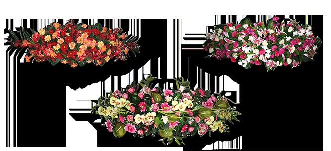Image réprésentative de la catégorie Dessus de cercueil